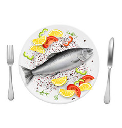 salmon fish on plate realistic vector image