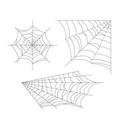 set cobweb spider web vector image