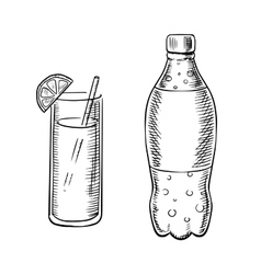 Bottle of soda with cocktail vector image vector image