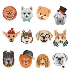 cartoon dogs and hipster puppy face muzzles vector image