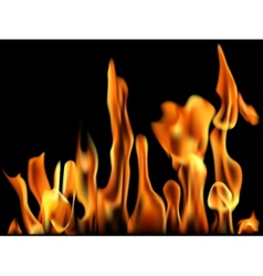 Fire Flame Banner vector image