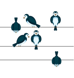 Birds sitting on wire in different positions vector