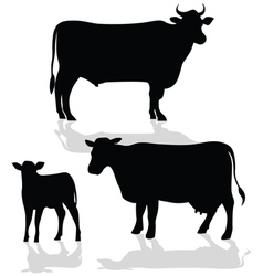Cow Family Silhouette with Shadow vector