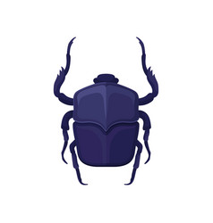 detailed flat icon of purple scarab beetle vector image