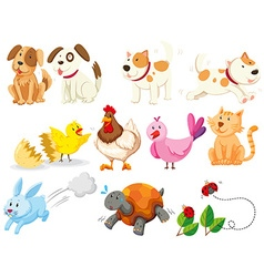 Different kind of domestic animals vector