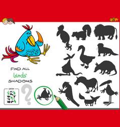 Educational shadows game with birds vector