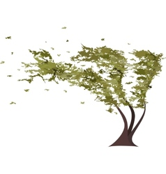 Grunge tree in the wind vector image