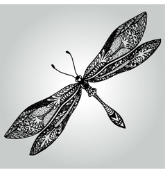 Handdrawing doodle beautiful dragonfly wildlife vector