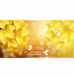 hello autumn with golden leaves background vector image