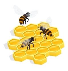 Honeycombs Flat 3d isometric vector