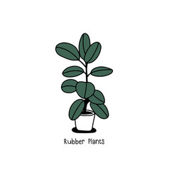 houseplant in pot hand draw sketch vector image