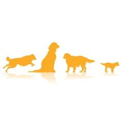 dog line vector image vector image