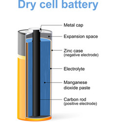 Dry cell battery vector image vector image