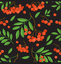 Branch of ashberries isolated on black seamless vector