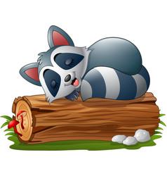 cartoon raccoon sleeping on the tree log vector image