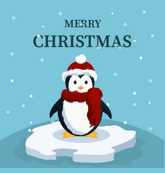christmas card of cute baby penguin vector image