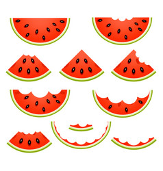 Watermelon slices isolated vector