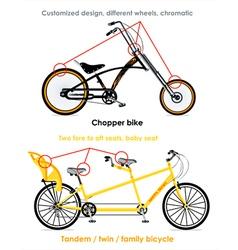 Bicycle types set III vector image vector image