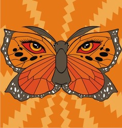 butterfly face vector image vector image