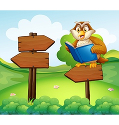 An owl reading above an empty arrow signboard vector image vector image