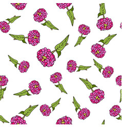 seamless pattern with zinnia vector image vector image