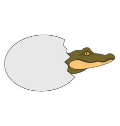 bacrocodile on white background vector image