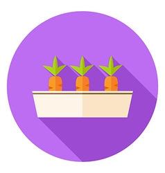 Carrots Vegetables in Garden Pot Circle Icon vector image
