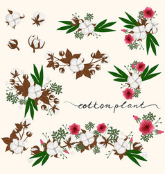 collection decorative elements with a cotton vector image