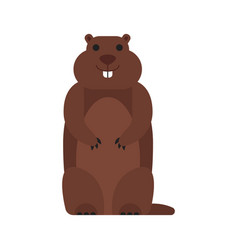 flat style of marmot vector image vector image