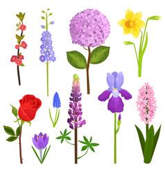 nature watercolor art flowers wreath vector image vector image