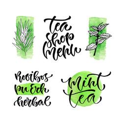 tea shop menu calligraphic phrase for cover vector image vector image