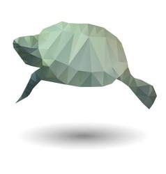 Abstract of sea turtle in origami style on white vector