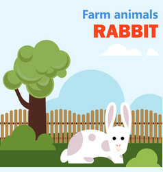 farm animal rabbit vector image