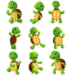 Happy turtle cartoon collection set vector