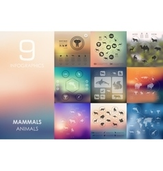 Mammals infographic with unfocused background vector