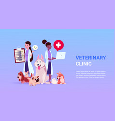 veterinary clinic poster with female doctors ver vector image