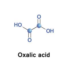 oxalic acid oxalate vector image