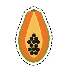 paw paw fruit icon vector image