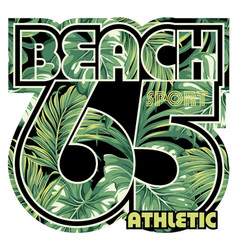 beach with tropical leaves background vector image vector image