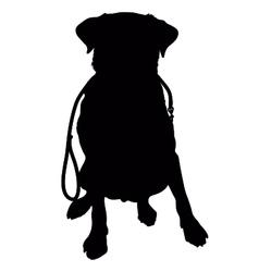 Labrador Retriever Leash Silhouette vector image vector image
