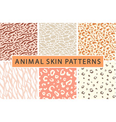 animal leopard skin texture print pattern vector image