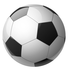 ball white vector image