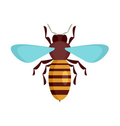 bee insect icon flat style vector image