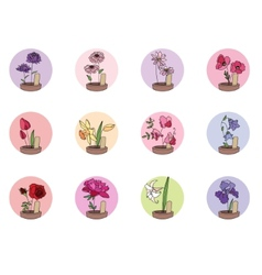 Cultivated flowers in pots Set of round icons vector