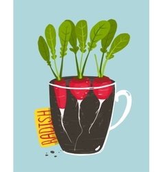Growing Radish with Green Leafy Top in Pot vector image