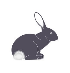 Rabbit with a fluffy tail icon vector