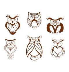 set cartoon owl birds vector image