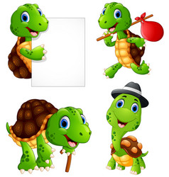 set of funny turtle on a white background vector image