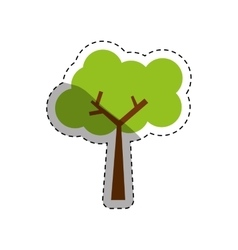 Tree natural ecology vector image