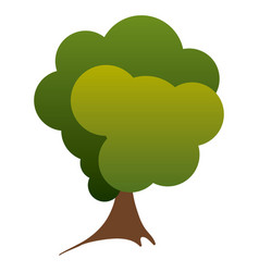colorful silhouette green tree nature icon vector image vector image